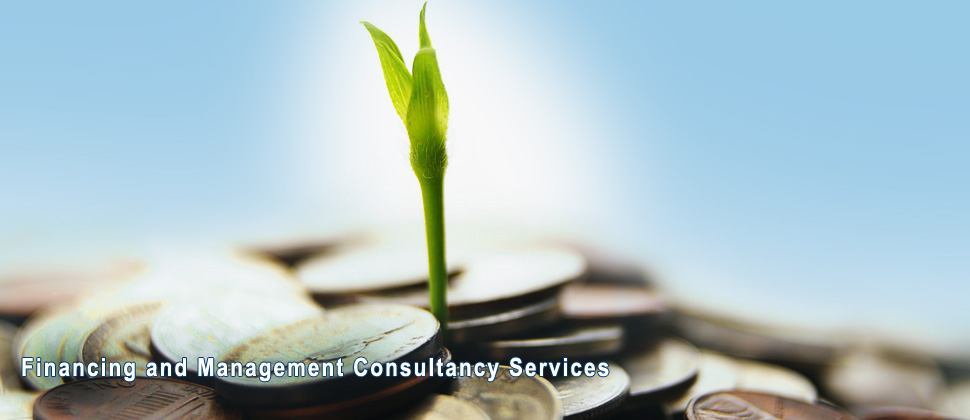 Financing and Management Consultancy Services